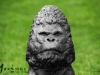 c1_Fabricio Torres gorilla_2_08